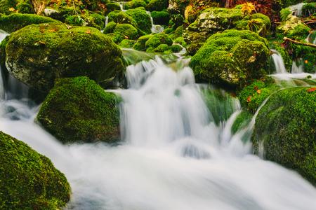 이끼 바위와 맑은 물과 산 개울 세부 사항입니다. 슬로베니아, 보 히니 호수, 유럽.