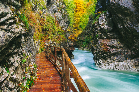 The famous Vintgar Canyon with wooden pats,Bled,Triglav,Slovenia,Europe