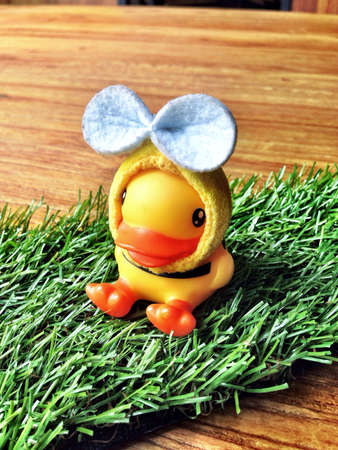 clothing: Cute duck Stock Photo