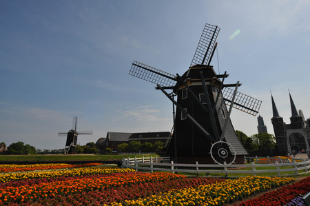 Dutch style wind mills in the twilight
