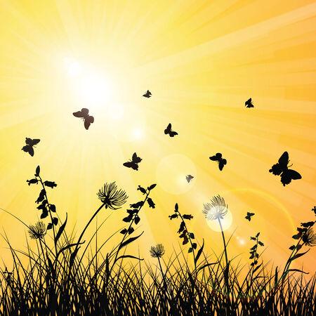ochtend dauw: Zon op de lente en de zomer met vlinders in het gras Stock Illustratie