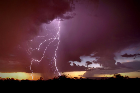 The Power of God in a lightning strike in the Sonoran Desert of Phoenix, Arizona with a dark purple sky and black foreground silhouette.