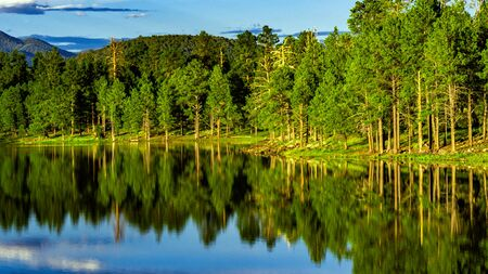 Kaibab Lake in Williams, Arizona with water reflecting with green pine trees and blue sky and clouds in the evening.