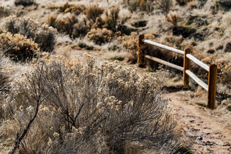 Boise foothills desert terrain with sagebrush and a fence in Idaho.