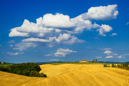 Country house in the golden wheat and blue sky photo