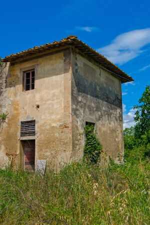 natural vegetation: abandoned building and occupied by natural vegetation Stock Photo