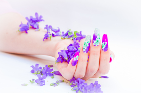 rebuilt: Hand with nails rebuilt and decorated with colorful flowers bring blue and white floral on white background, beautiful novelty for spring and summer