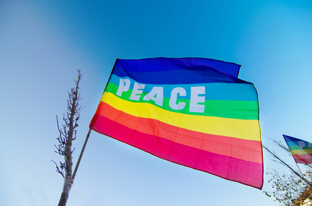 peace flag hanging from a tree burned by war is shining in the blue sky