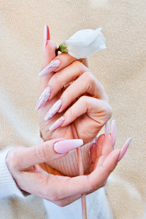 hands with nails decorated with pink and brilliant designs that form light reflections tighten a white flower