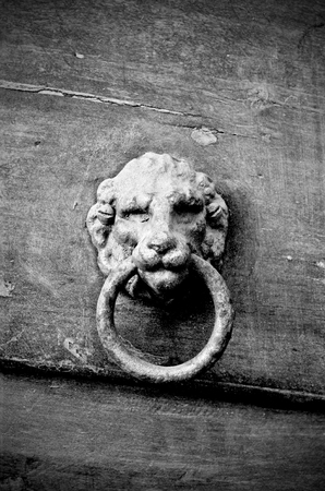 Knocker in metal lion's head on old wooden door, black and white
