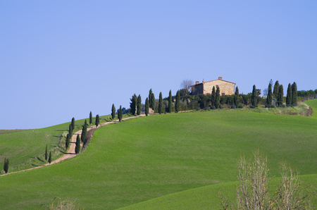 Tuscan countryside with farm and rows of trees, cypresses, poplars and cultivated fields Stock Photo