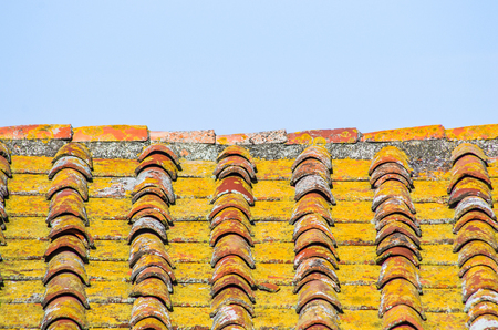 roof with aged brick roof with moss and color change