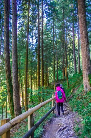 young girl hiker walks happy with sticks for hiking trails in shady mountain forest