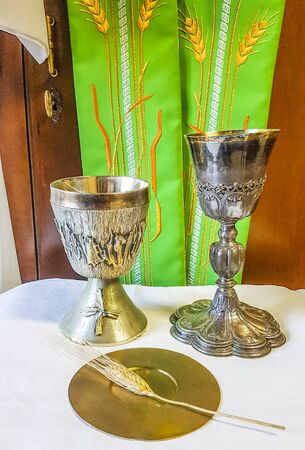 ear of wheat ripens for the bread which becomes the body of jesus christ and chalice to welcome the wine, blood of christ, for the mass of the faithful with green stole for the priest ..