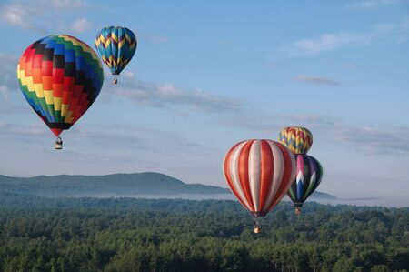 Hot air balloons soaring above the treetops