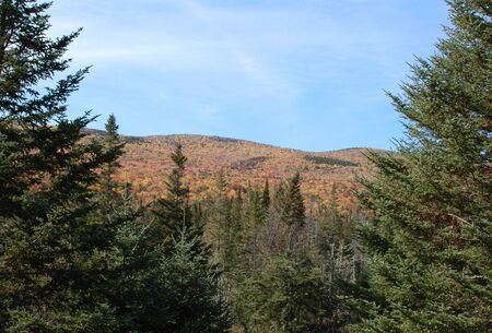 notch: Vivid foliage on a mountain at Crawford Notch, New Hampshire, on a clear fall day Stock Photo