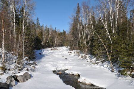 Partially frozen river winding through a stand of birch trees near Byron, Maine photo