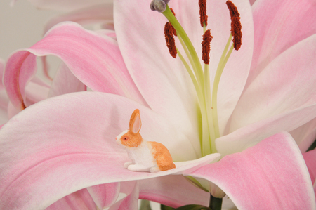 Tiny little toy rabbit sitting on a pink lily