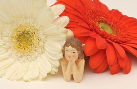 Fairy peeking out from between a red daisy and a white one Imagens