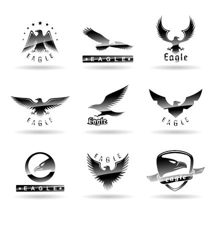 Eagle logo vector concepts, falcon logotype template, hawk illustration Illustration