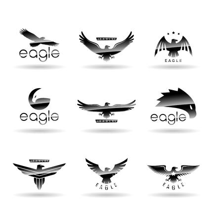 Eagle logo vector concepts, falcon logotype template, hawk illustration  イラスト・ベクター素材