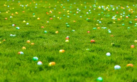 osterei: Eine Frühlingswiese mit Ostereier im Gras versteckt