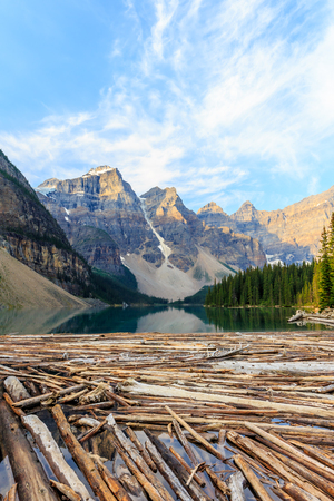 canadian rockies: Idyllic Moraine Lake with floating logs in Banff National Park, Canadian Rockies