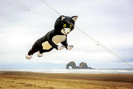 Rockaway Beach, Oregon, USA - May 24, 2015: The annual Rockaway Beach Kite Festival offers great family fun. Editorial