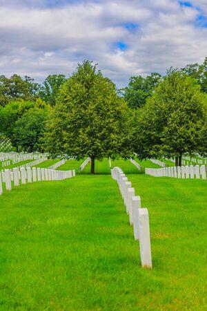 tombstones: Lines of tombstones in Arlington National Cemetery, Virginia. Editorial