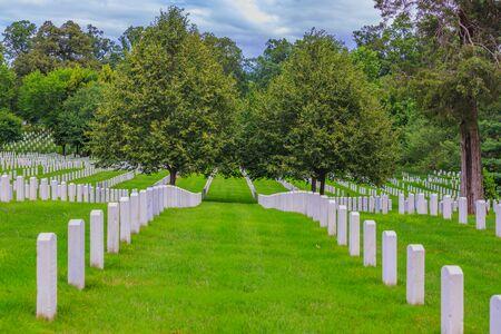 弗吉尼亚州阿灵顿国家公墓的一排排墓碑。