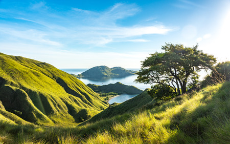 Beautiful Valley View of Gili Lawa with Clear Sky. Komodo National Park, Labuan Bajo, Flores, Indonesia 免版税图像