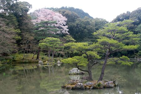 Japanese Garden - Pond photo