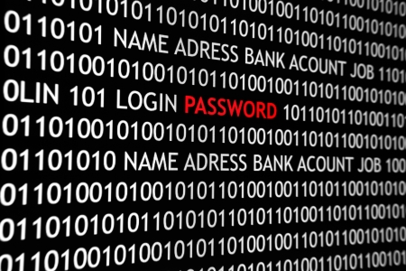 Online computer screen shot with binary code and password text, great concept for computer, technology  and online security. Stock Photo - 15576320