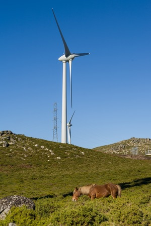 fossil fuels: Wind farm. Modern windmills or wind turbines in the countryside landscape. Electricity is powered ecological and considered better for the environment over oil and other fossil fuels. A renewable resource for energy. Stock Photo