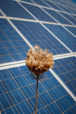 photocell: Modern sun energy farm solar panels, for eco and nature renewable production. Stock Photo