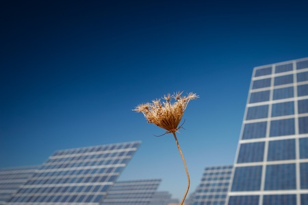 Modern sun energy farm solar panels, for eco and nature renewable production. Stock Photo