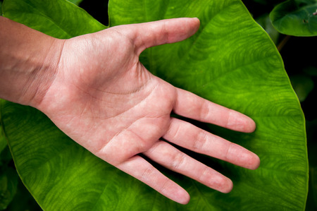 everybody: Nature and the environment is good or bad depends on the hands of everyone Stock Photo