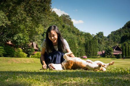 chicas sonriendo: ni�a feliz cuidar y jugar con el perro, beagle en el valle