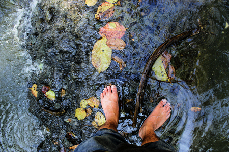 singly: foots on fresh water in forest