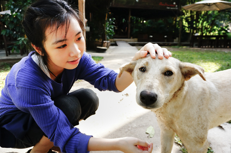 pat: happy girl takes care and  pat the dog