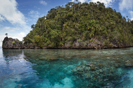 Raja Ampat limestone islands protect a beautiful lagoon where a shallow coral reef thrives. photo