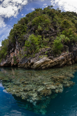 papua: Raja Ampat limestone islands protect a beautiful lagoon where a shallow coral reef thrives.
