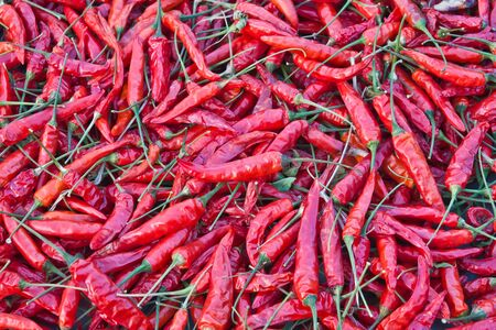 dry red chili food fresh photo
