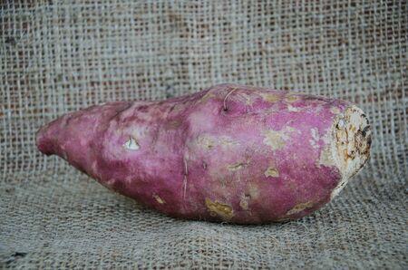 potato tree: sweet potato (Ipomoea batatas) on fabric background, yam Stock Photo