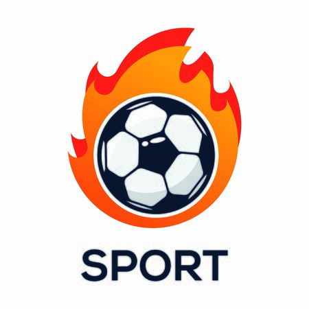 Illustration Vector Graphic of Sport  Soccer Illustration