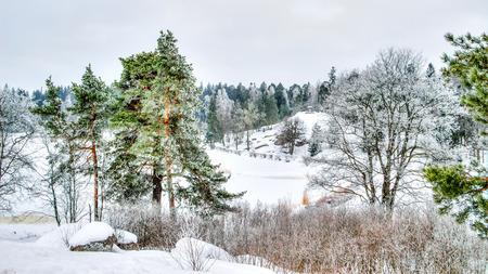 vyborg: Mon repos Park Vyborg Russia winter landscape landmark top view