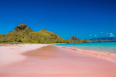 Pink Beach in Komodo Dragon Island Indonesië