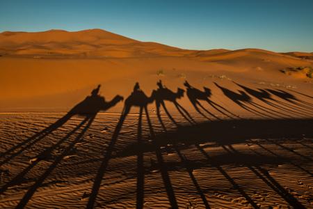 Sahara desert in Morocco Standard-Bild