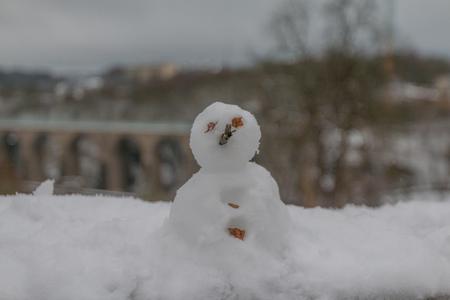 Snowman 免版税图像