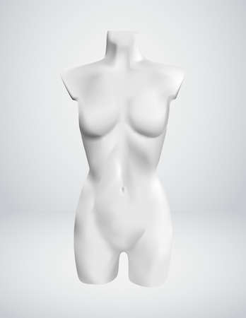 naked female body: Woman Torso